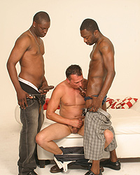 David Thompson Love Black Cock