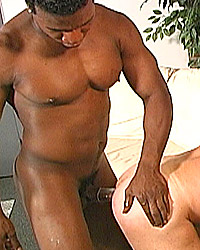 Eric York Mandingo Inches